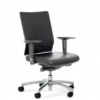 Arc mesh gaslift chair
